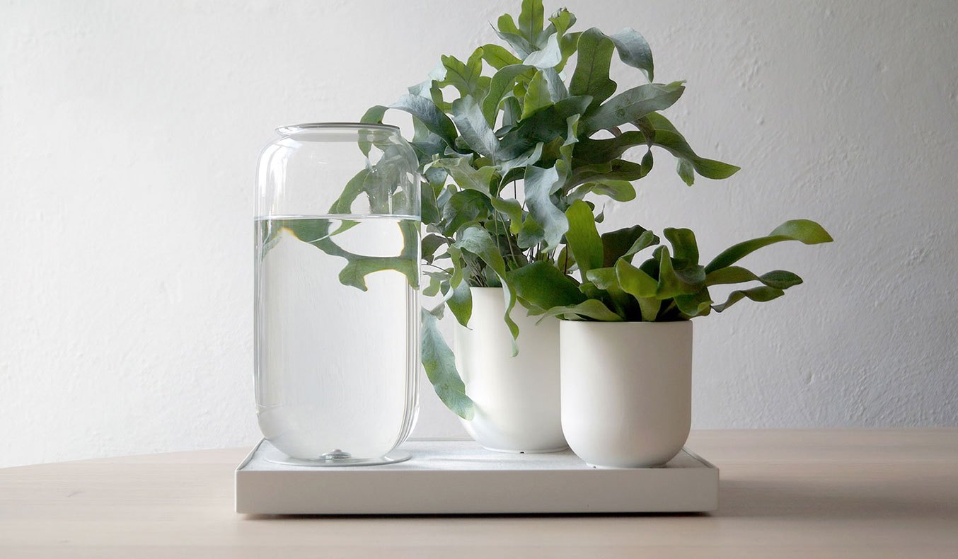 Pikaplant-Tableau-Automatic-Watering-Tray-01