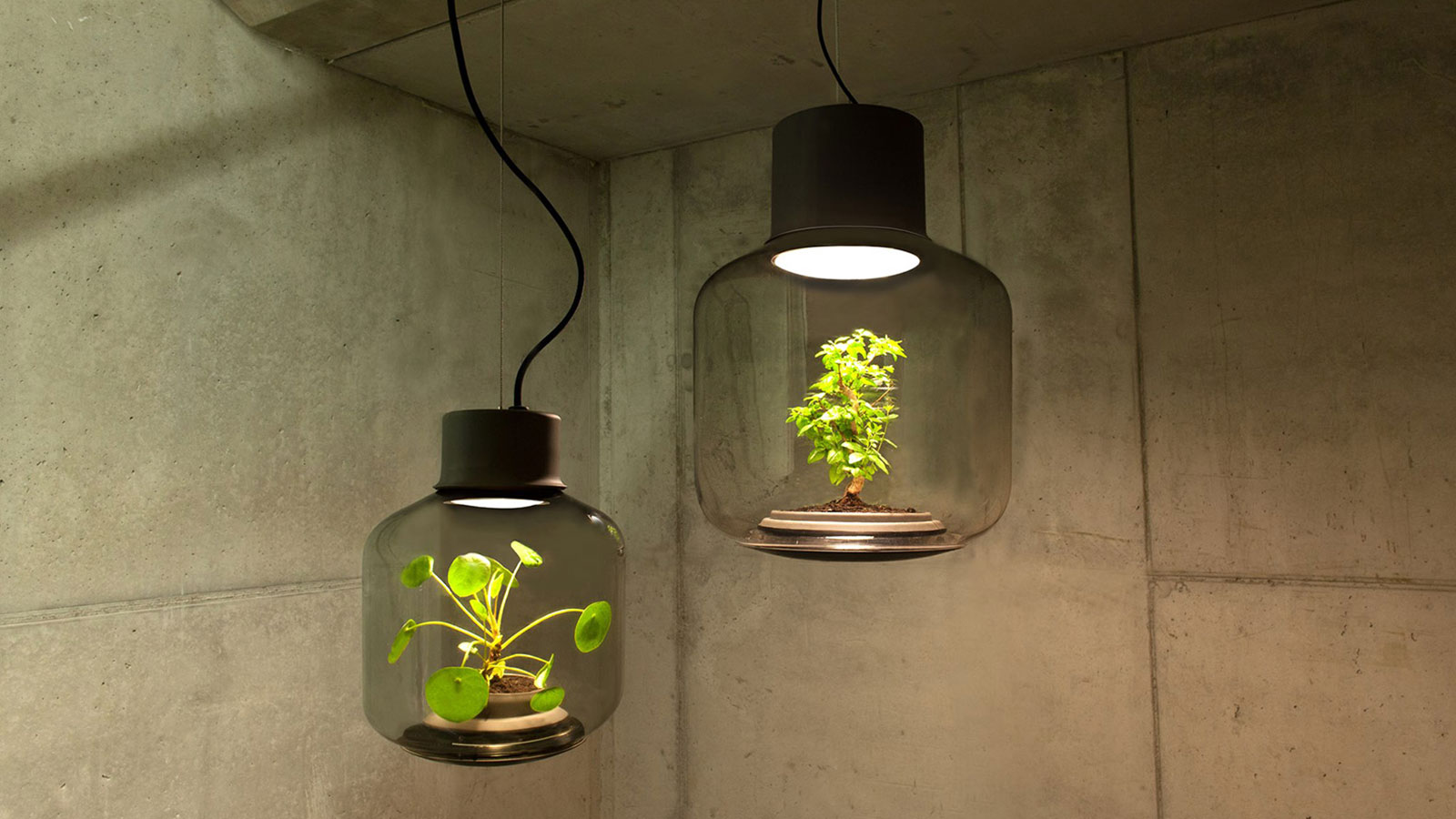 MYGDAL PLANTLAMP: NO NATURAL LIGHT NEEDED