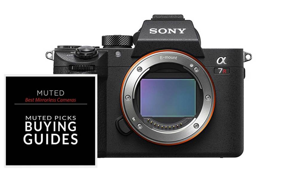 Best Mirrorless Cameras For Any budget