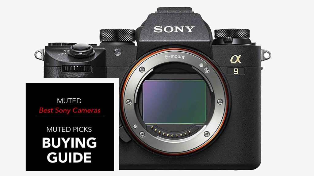 Best Sony Mirrorless Cameras