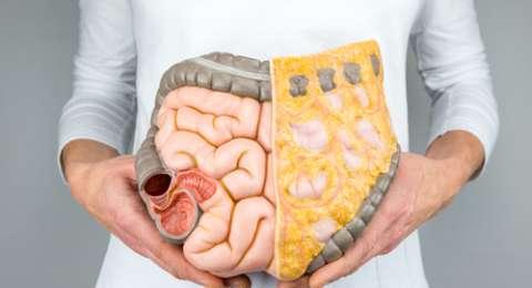 Tips Sehat Pencernaan Untuk Penderita Maag