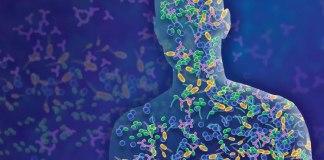 Mikrobiyota Nedir? Faydaları ve Bilimsel Yönü