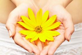 Endometriozis ve Kanserin Ortak Bir Özelliği: Somatik Mutasyonlar