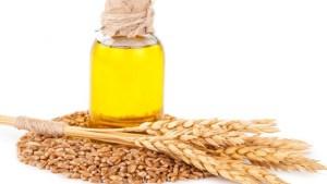 Bitkisel yağlar buğday tohumu yağı