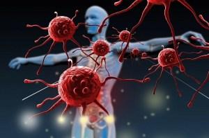 Çinko bağışıklık sistemi