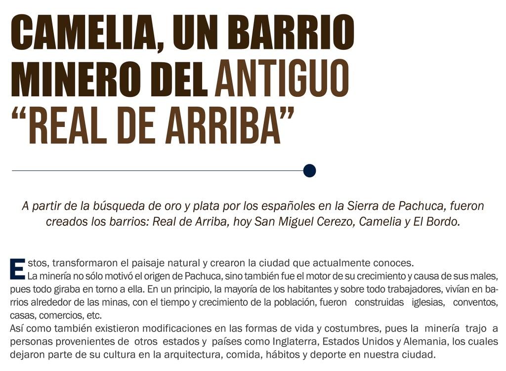 CAMELIA BARRIO MINERO 02 2