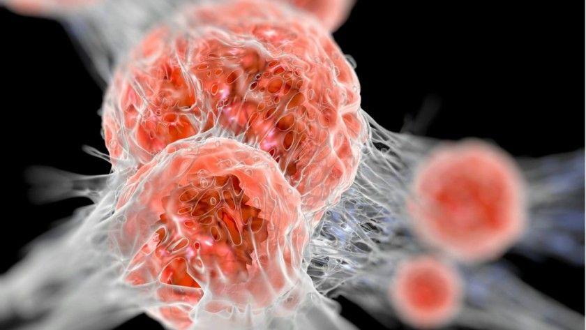 Microsoft quiere acabar con el cáncer en diez años