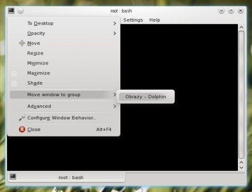 KDE 4.4 ventanas agrupadas 2