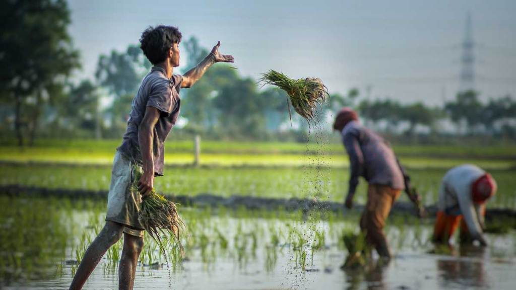 Crops in 6.64 lakh hectares of land in Bihar damaged due to Flood in 2021
