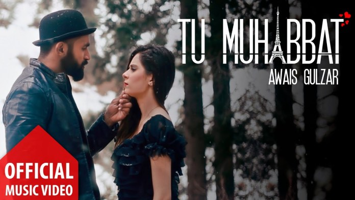 Tu Muhabbat by Awais Gulzar (Music Video Released)
