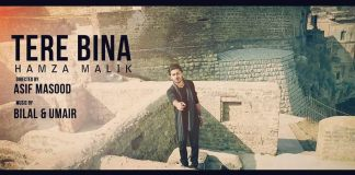 Tere Bina by Hamza Malik (Music Video)