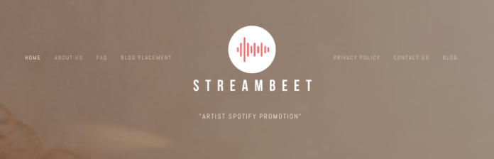 Streambeet review