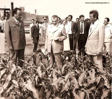 Nicolae Ceausescu in vizita de lucru.