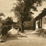 Cara Orman - gospodărie turcească