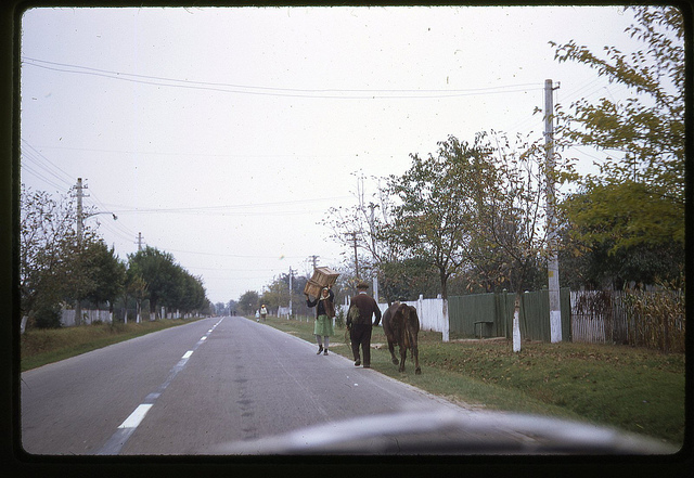 Scenă dintr-un sat din România în 1971.