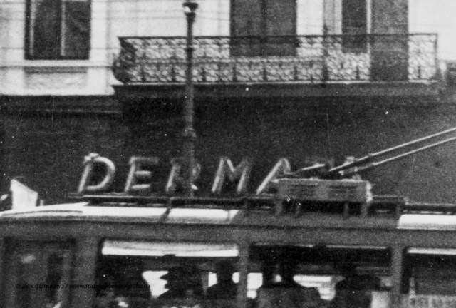Detaliu - Firma Dermata