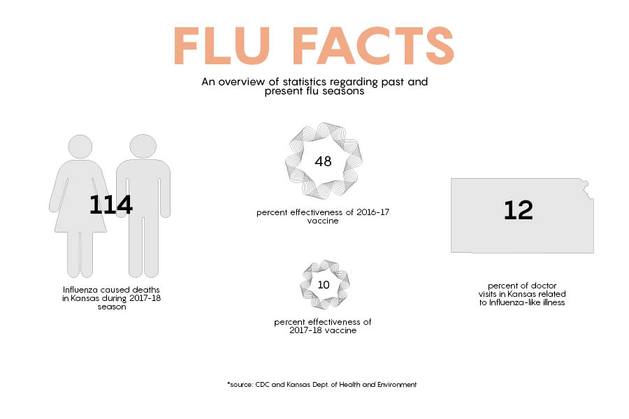 Another 13 flu deaths, county reports