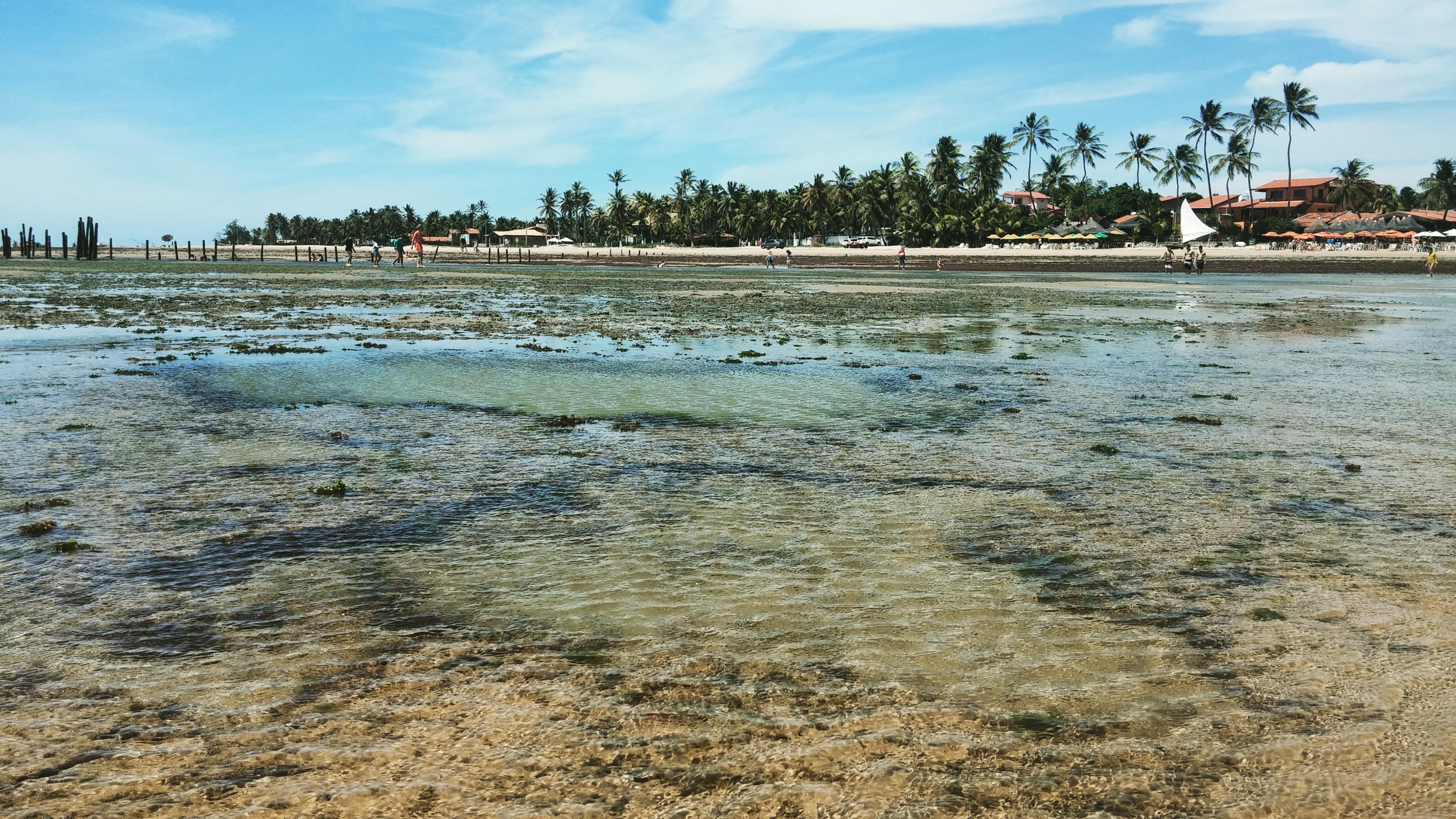 Praia de Flecheiras, Flecheiras - CE, by Luciana de Paula, 2016