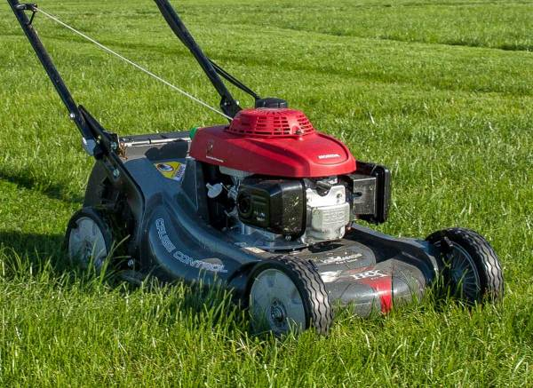 tips maintaining lawn