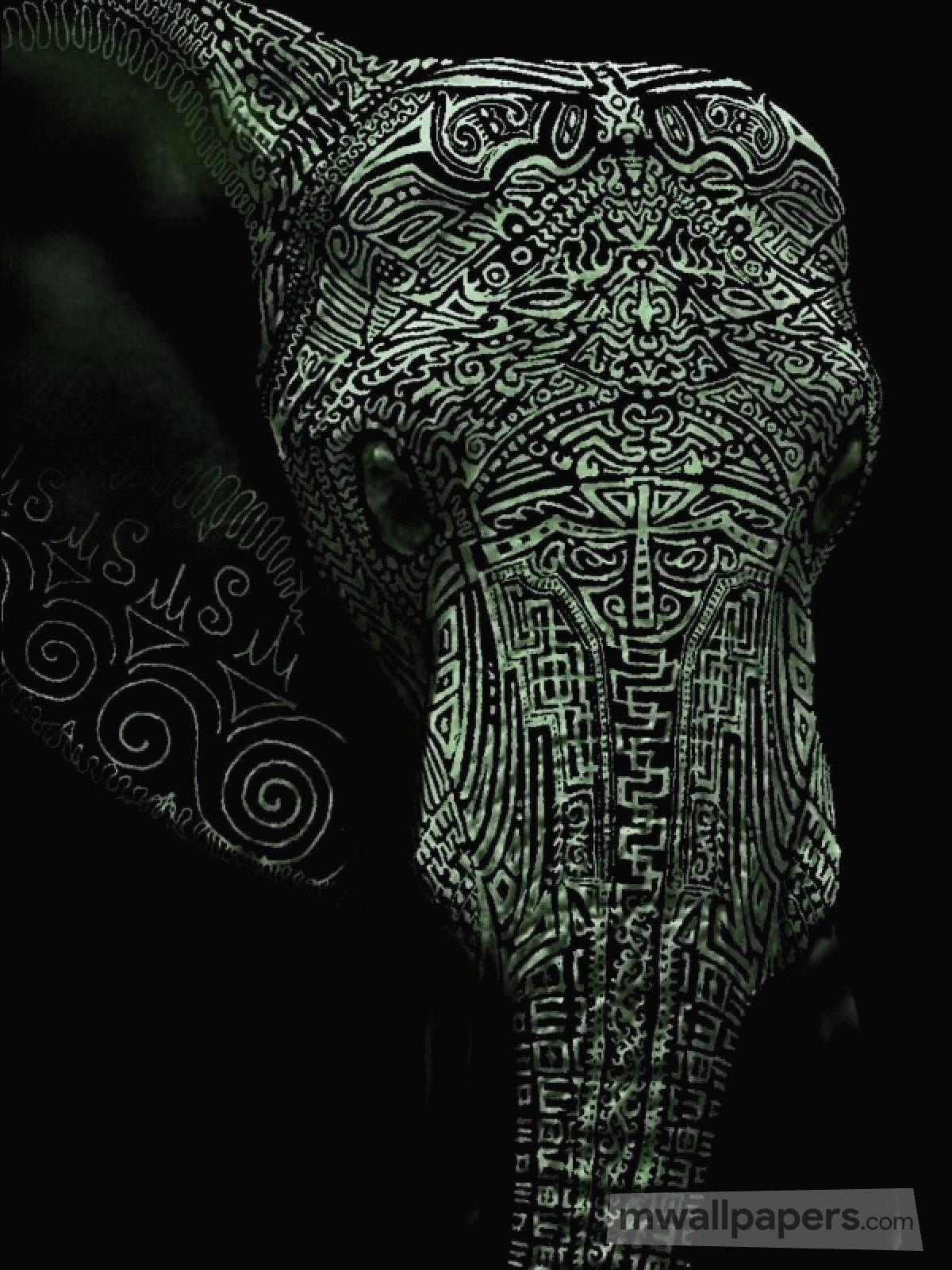 Hd Wallpaper Iphone 7 20 Elephant 2019 Hd Photos Wallpapers Download