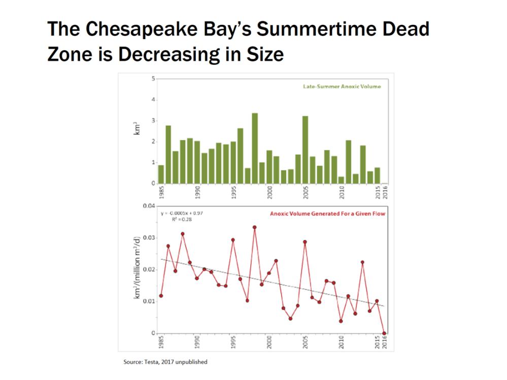 medium resolution of summertime dead zone