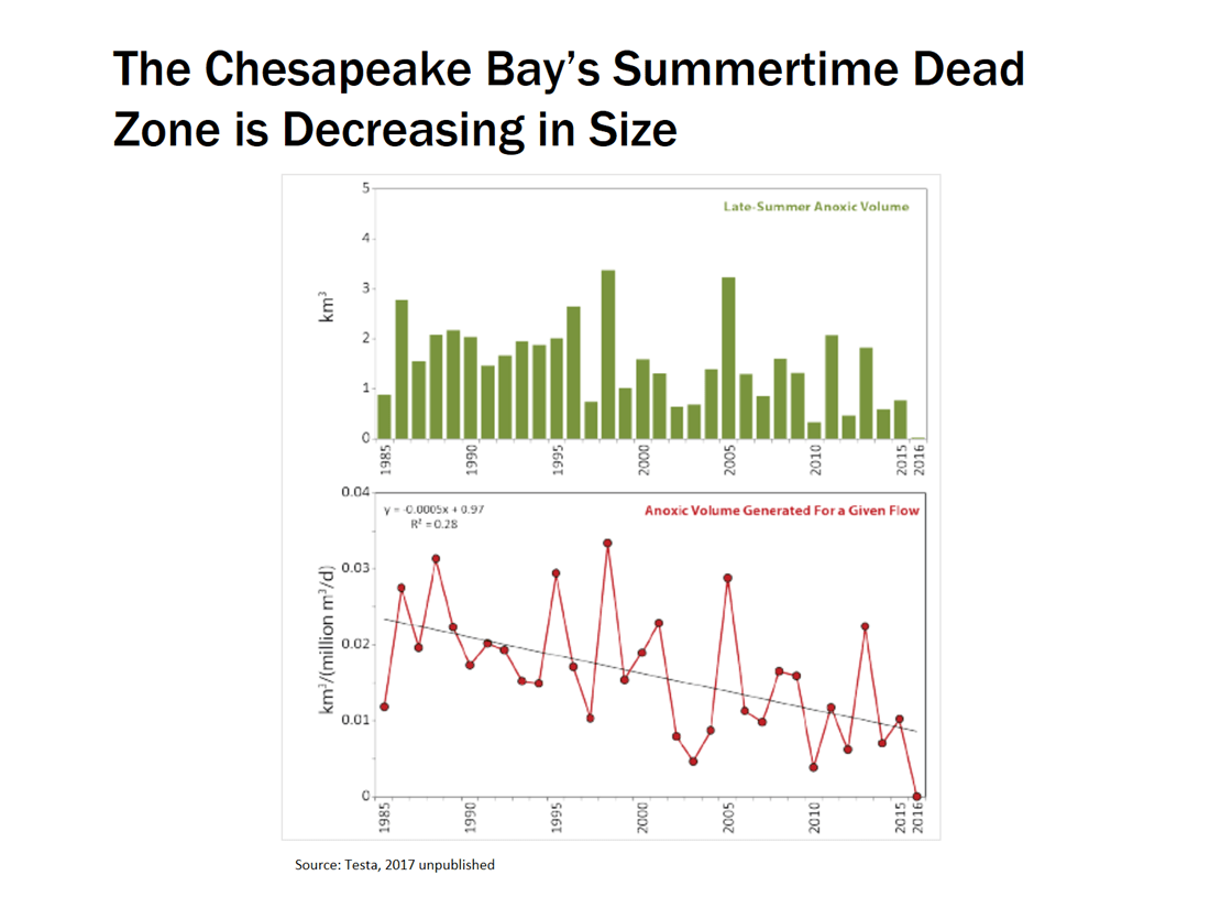 hight resolution of summertime dead zone