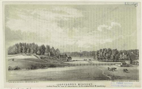 Lispenard's Meadows