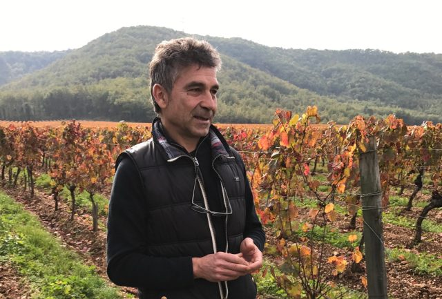 A Visit with Pascal Verhaeghe at Chateau du Cedre