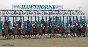 The start of the day's ninth and final race at Hawthorne on Friday (2-27-15)