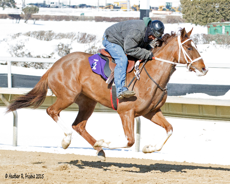 Henry Guillory takes his 2-year old out on the Hawthorne surface for his daily exercise.