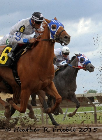 Place horse in trial 2 and finals qualifier, Your Just Jesse (David Pinon rides/Bob Johnson trains)
