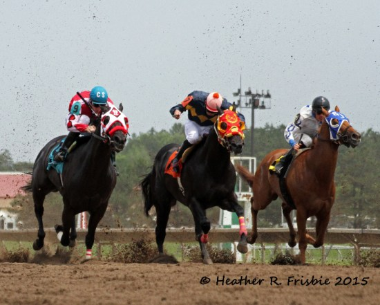 Eventual co-winner Fortune in a Wagon, heading to victory in the Quarter Horse Derby