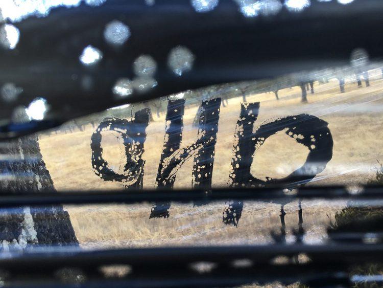 Signature de aNa artiste de Land Art, peinte en noir sur un film transparent tendu entre des arbres dans la nature.