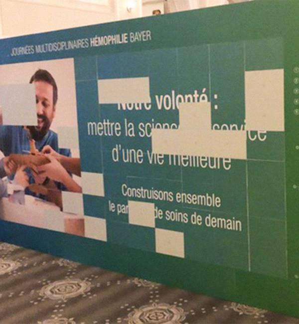 Animation symposium bayer puzzle photo