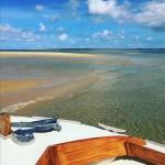 Balade en pinasse depuis le Cap Ferret