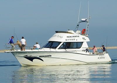Blue Fin Tuna Cap Ferret