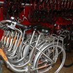 Vélo à louer chez Cyclos Cap Cap Ferret