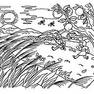 秋の塗り絵素材一覧|大人の「塗り絵」教室(無料)【my介護の広場】