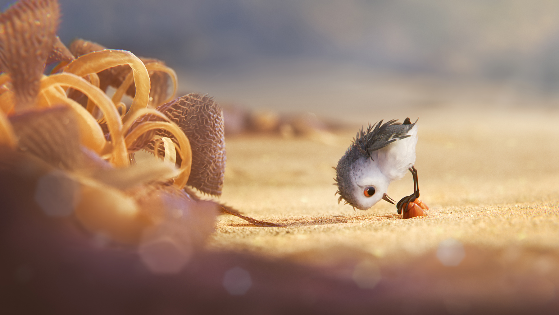 "Screen shot from ""Piper"", a short film by Pixar."