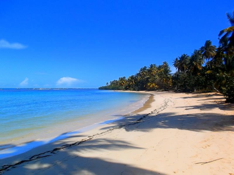 Der Playa Carolina, einer der Traumstrände auf der Halbinsel Samaná