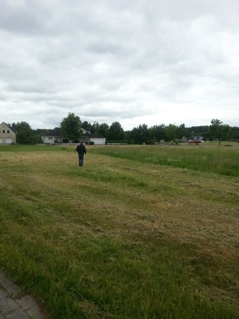 Gras im Juni (3)