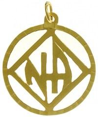 NA Symbol Pendant | NA Gold Pendants | My 12 Step Store