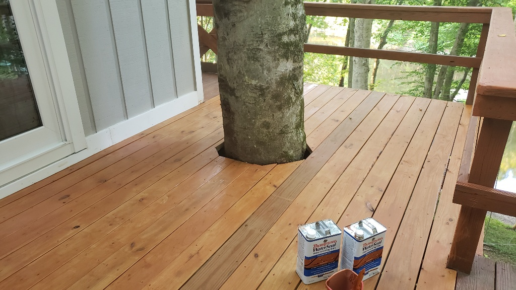 Restoring a Deck Thompsons Water Seal Tree in Deck