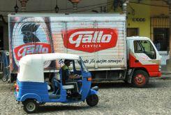Cerveza Gallo