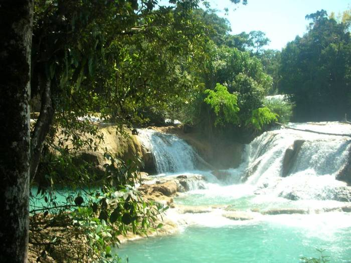When they say Agua Azul, they MEAN Agua Azul