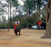 What NOT to do in Siem Reap