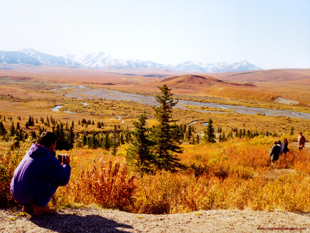 Denali National Park is nice any time of year, but the fall colors are