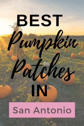 Time to get the kids together for some fall festivals. Check this list of 8 Best Pumpkin Patches in San Antonio Texas.