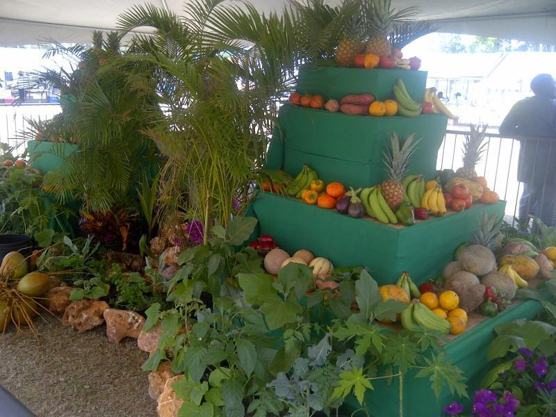 PUT AXA (ANGUILLA) ON YOUR TABLE – Local Fruits and Vegetables in Anguilla