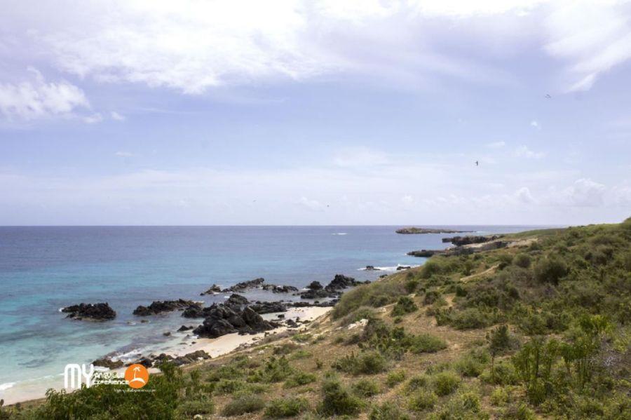 Volcanic Rocks and 'Puppy Island' along Dog Island